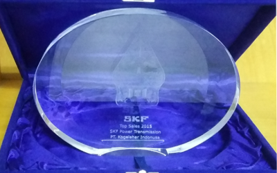 SKF Power Transmission Top Sales 2015